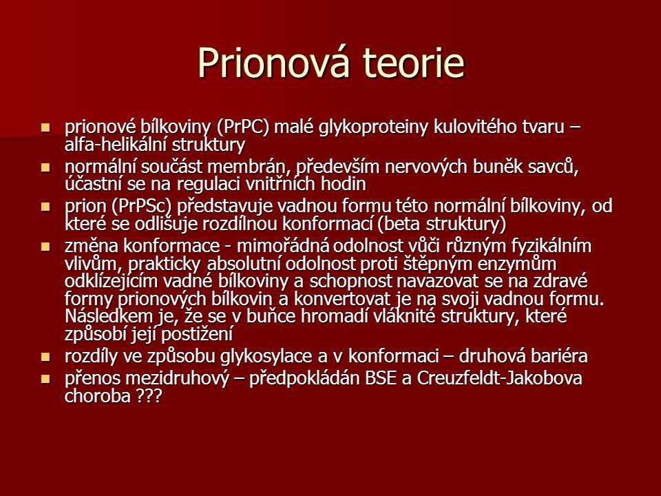 Prionová teorie prionové bílkoviny (PrPC) malé glykoproteiny kulovitého tvaru – alfa-helikální struktury prionové bílkoviny (PrPC) malé glykoproteiny