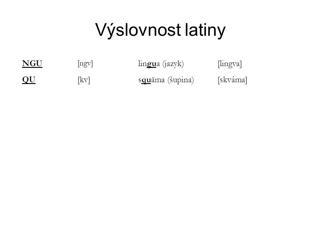 Výslovnost latiny NGU [ngv] lingua (jazyk)[lingva] QU[kv]squāma (šupina)[skváma]
