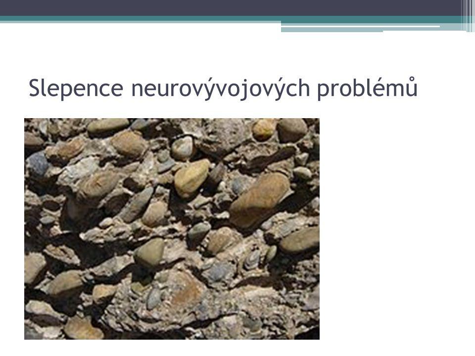 Slepence neurovývojových problémů