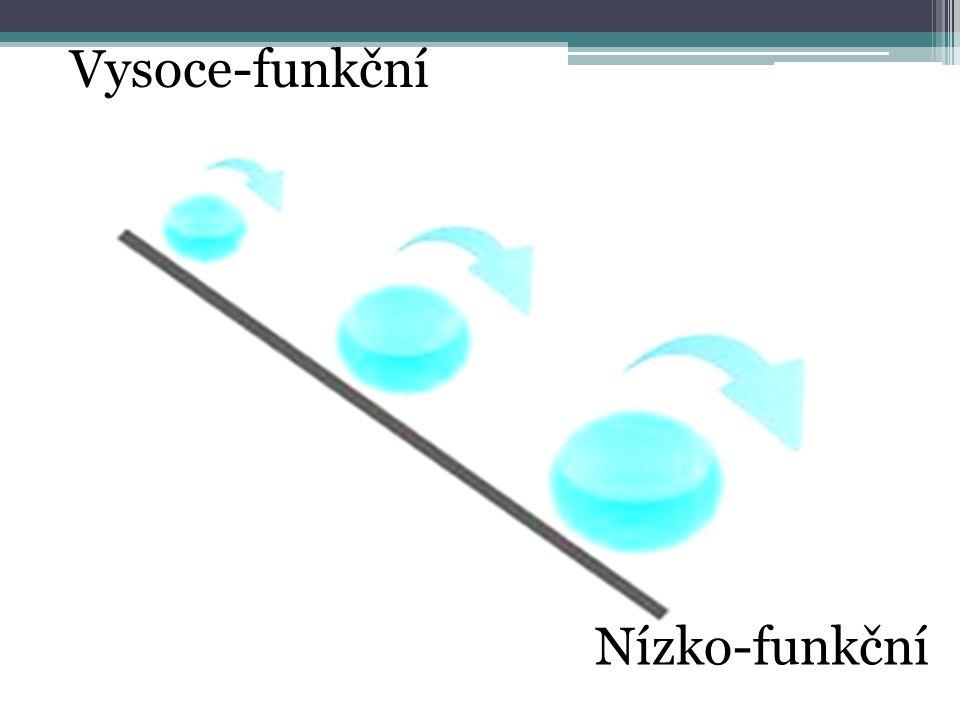 Nízko-funkční Vysoce-funkční