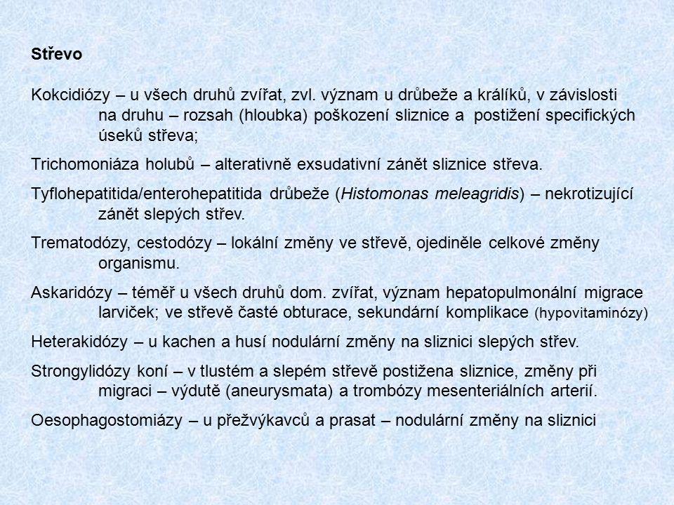 Střevo Kokcidiózy – u všech druhů zvířat, zvl. význam u drůbeže a králíků, v závislosti na druhu – rozsah (hloubka) poškození sliznice a postižení spe