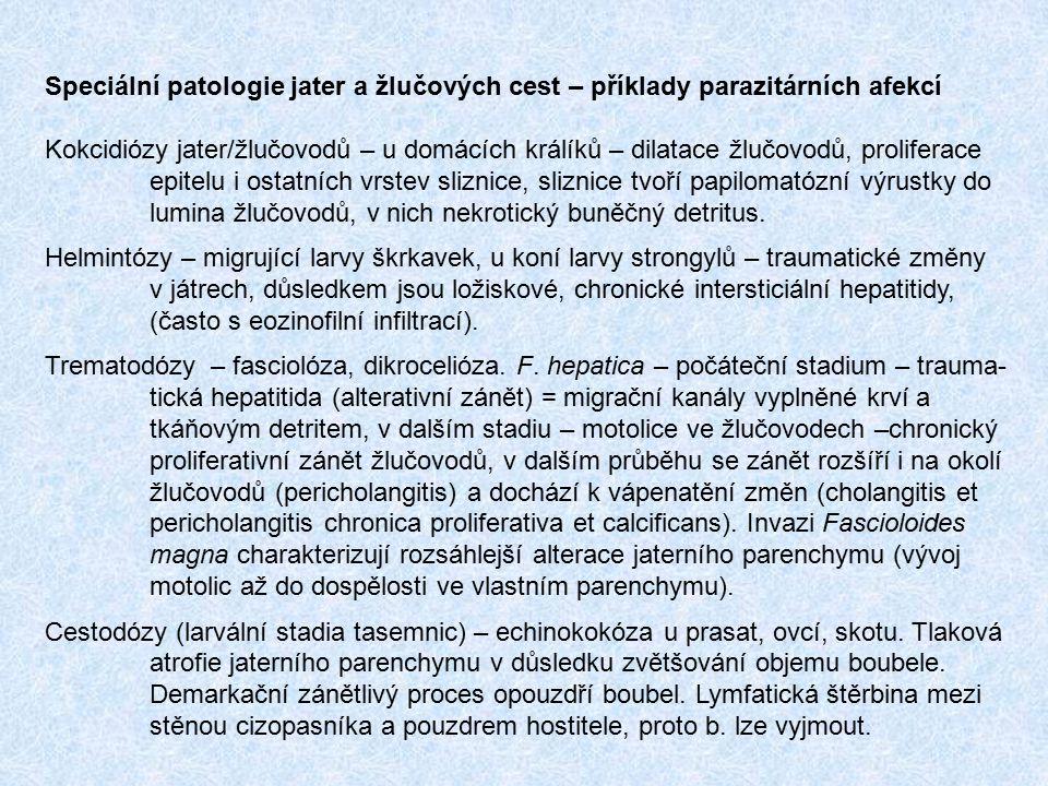 Speciální patologie močového ústrojí – příklady parazitárních afekcí Kokcidióza ledvin u housat a káčat – rozsáhlé změny epitelu, deskvamace, dilatace ledvinných kanálků, zánětlivá rekace v intesticiu ledvin.