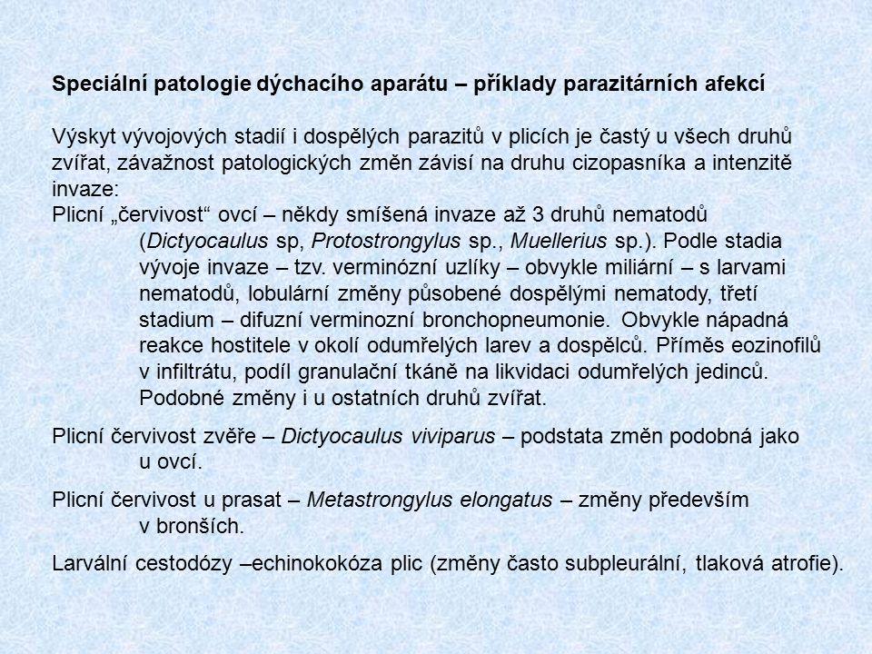 Speciální patologie dýchacího aparátu – příklady parazitárních afekcí Výskyt vývojových stadií i dospělých parazitů v plicích je častý u všech druhů z