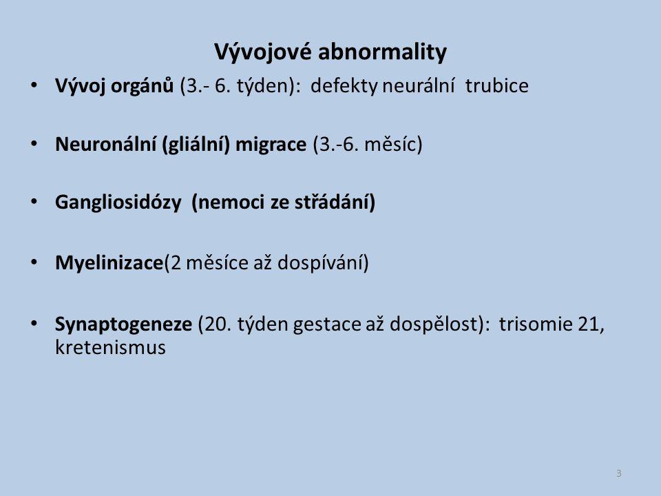 Vývojové abnormality Vývoj orgánů (3.- 6. týden): defekty neurální trubice Neuronální (gliální) migrace (3.-6. měsíc) Gangliosidózy (nemoci ze střádán