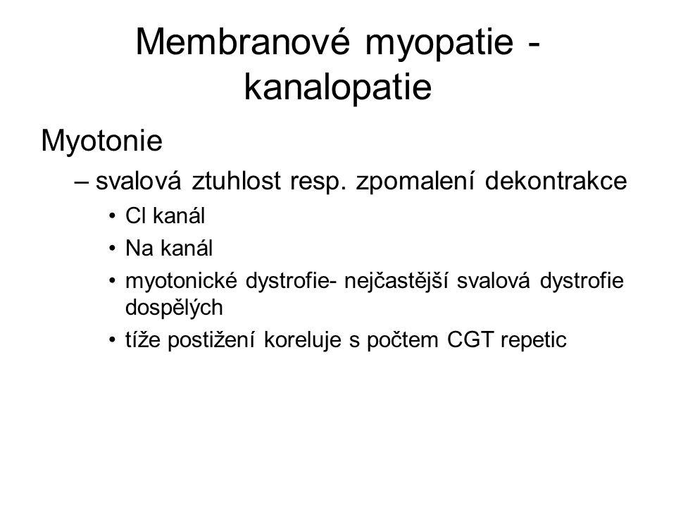 Membranové myopatie - kanalopatie Myotonie –svalová ztuhlost resp.