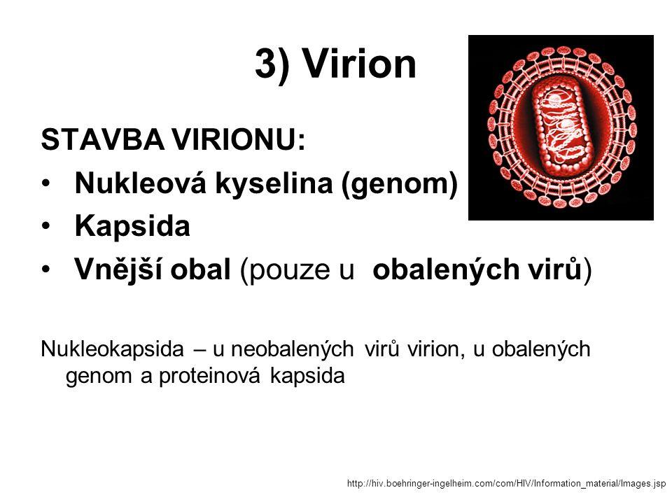 3) Virion STAVBA VIRIONU: Nukleová kyselina (genom) Kapsida Vnější obal (pouze u obalených virů) Nukleokapsida – u neobalených virů virion, u obalenýc