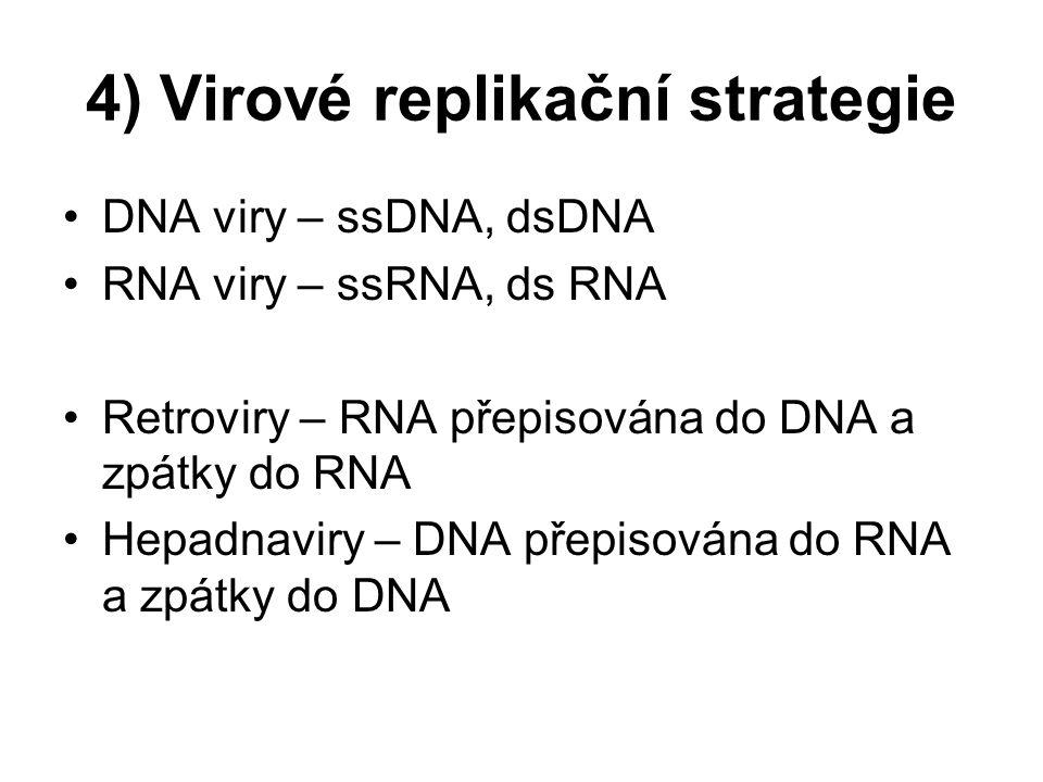 4) Virové replikační strategie DNA viry – ssDNA, dsDNA RNA viry – ssRNA, ds RNA Retroviry – RNA přepisována do DNA a zpátky do RNA Hepadnaviry – DNA p