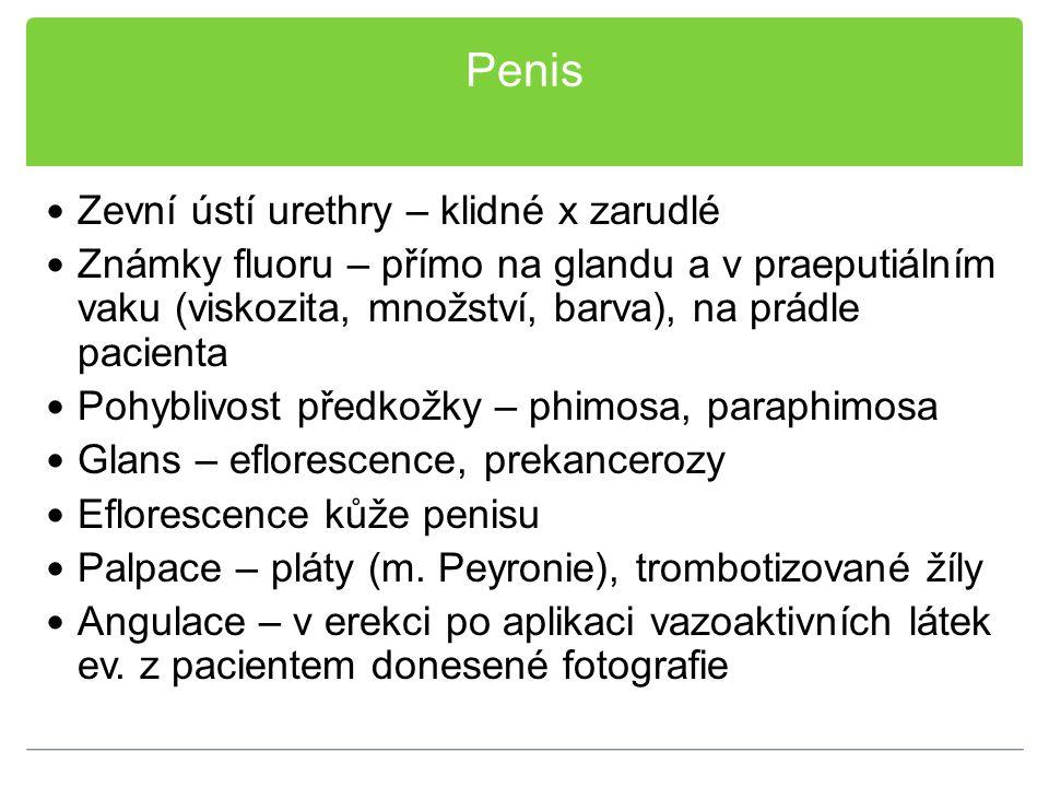 Penis Zevní ústí urethry – klidné x zarudlé Známky fluoru – přímo na glandu a v praeputiálním vaku (viskozita, množství, barva), na prádle pacienta Po