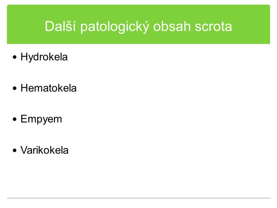 Další patologický obsah scrota Hydrokela Hematokela Empyem Varikokela