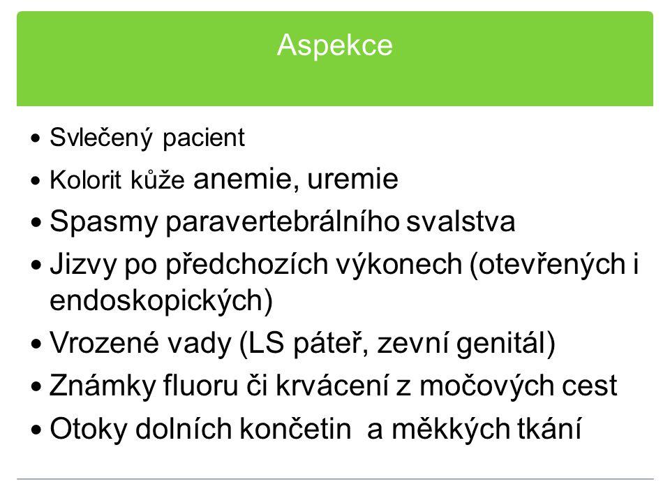 Aspekce Svlečený pacient Kolorit kůže anemie, uremie Spasmy paravertebrálního svalstva Jizvy po předchozích výkonech (otevřených i endoskopických) Vro