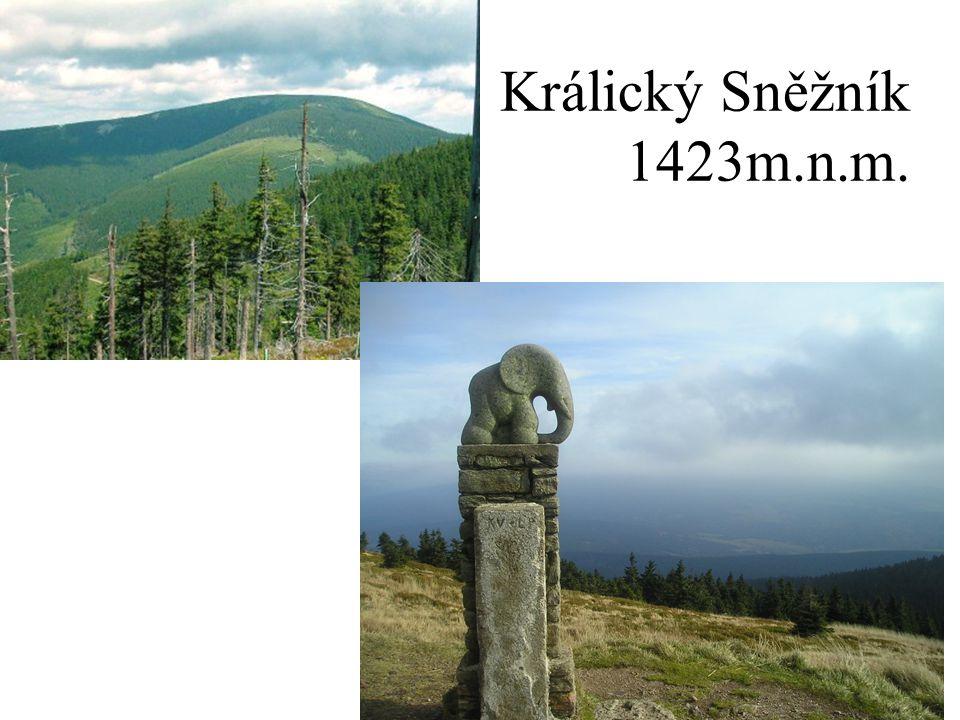 Králický Sněžník 1423m.n.m.