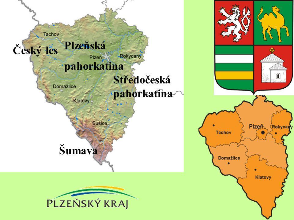 Obyvatelstvo Různá délka osídlení v částech kraje Druhá nejmenší hustota zalidnění Nerovnoměrné rozmístění V horských oblastech převládalo německé obyvatelstvo, výjimkou je Domažlicko Nejdéle a největší hustota – Plzeňská pánev Málo větších měst (Plzeň, Klatovy) Vysoký přirozený úbytek Stárnutí populace (ø věk 40,2 let, 2.