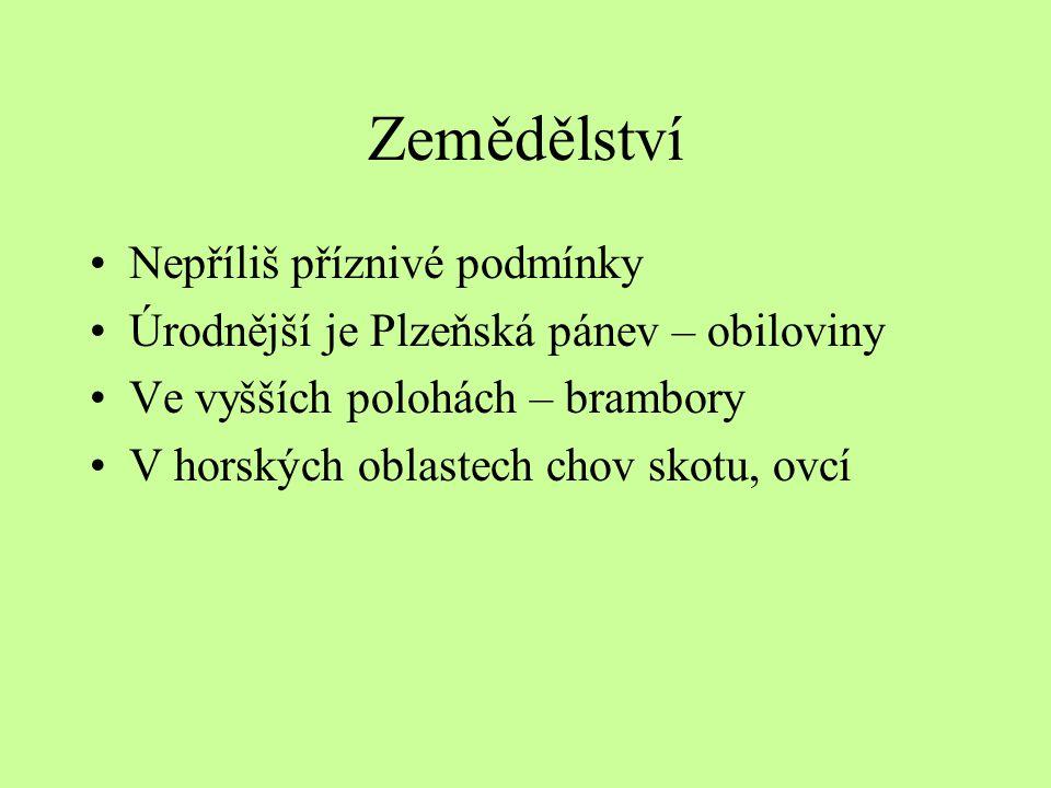 Zemědělství Nepříliš příznivé podmínky Úrodnější je Plzeňská pánev – obiloviny Ve vyšších polohách – brambory V horských oblastech chov skotu, ovcí