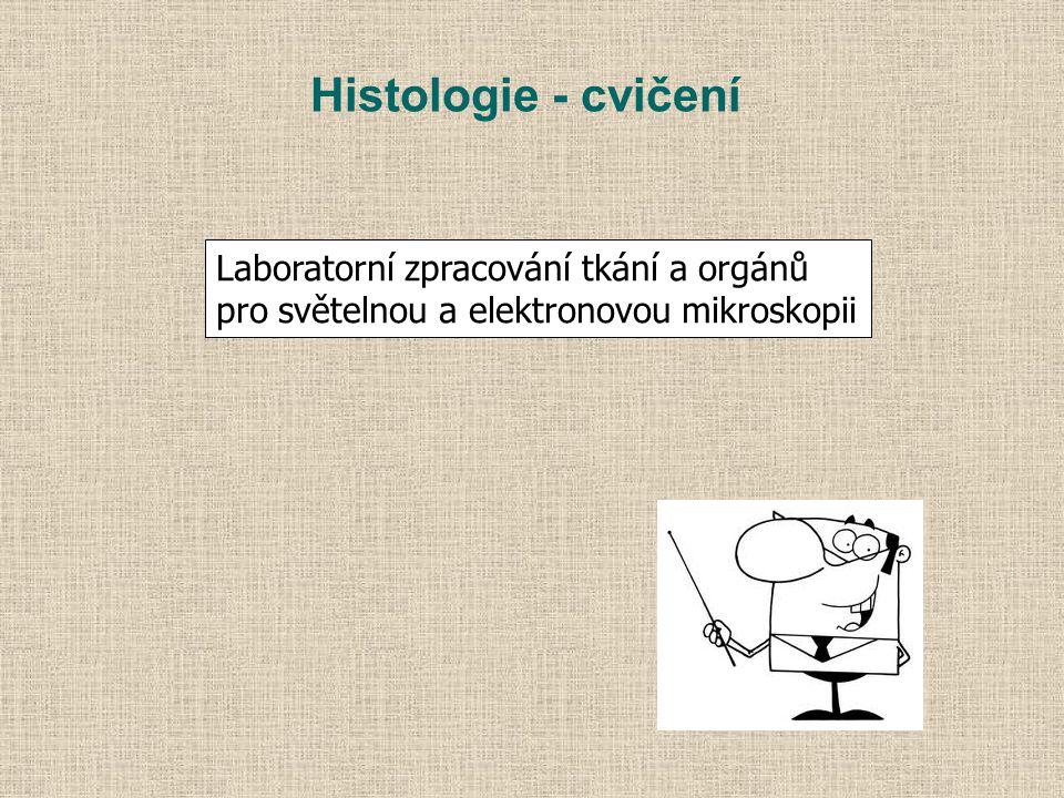 Histologie - cvičení Laboratorní zpracování tkání a orgánů pro světelnou a elektronovou mikroskopii