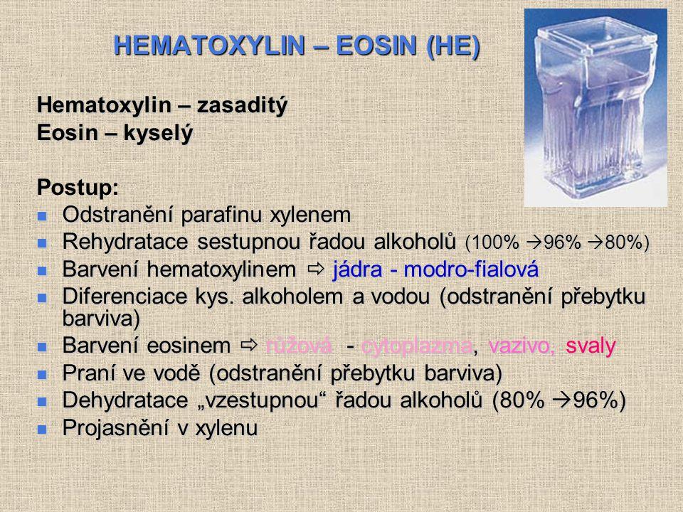 HEMATOXYLIN – EOSIN (HE) HEMATOXYLIN – EOSIN (HE) Hematoxylin – zasaditý Eosin – kyselý Postup: Odstranění parafinu xylenem Odstranění parafinu xylenem Rehydratace sestupnou řadou alkoholů (100%  96%  80%) Rehydratace sestupnou řadou alkoholů (100%  96%  80%) Barvení hematoxylinem  jádra - modro-fialová Barvení hematoxylinem  jádra - modro-fialová Diferenciace kys.