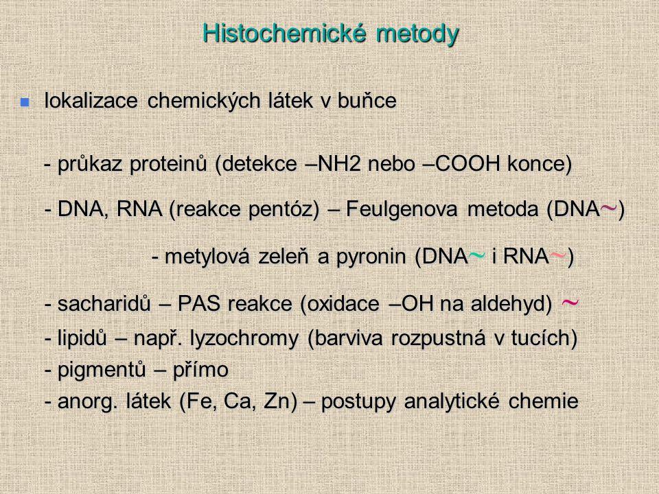 Histochemické metody lokalizace chemických látek v buňce lokalizace chemických látek v buňce - průkaz proteinů (detekce –NH2 nebo –COOH konce) - průkaz proteinů (detekce –NH2 nebo –COOH konce) - DNA, RNA (reakce pentóz) – Feulgenova metoda (DNA  ) - metylová zeleň a pyronin (DNA  i RNA  ) - sacharidů – PAS reakce (oxidace –OH na aldehyd)  - lipidů – např.