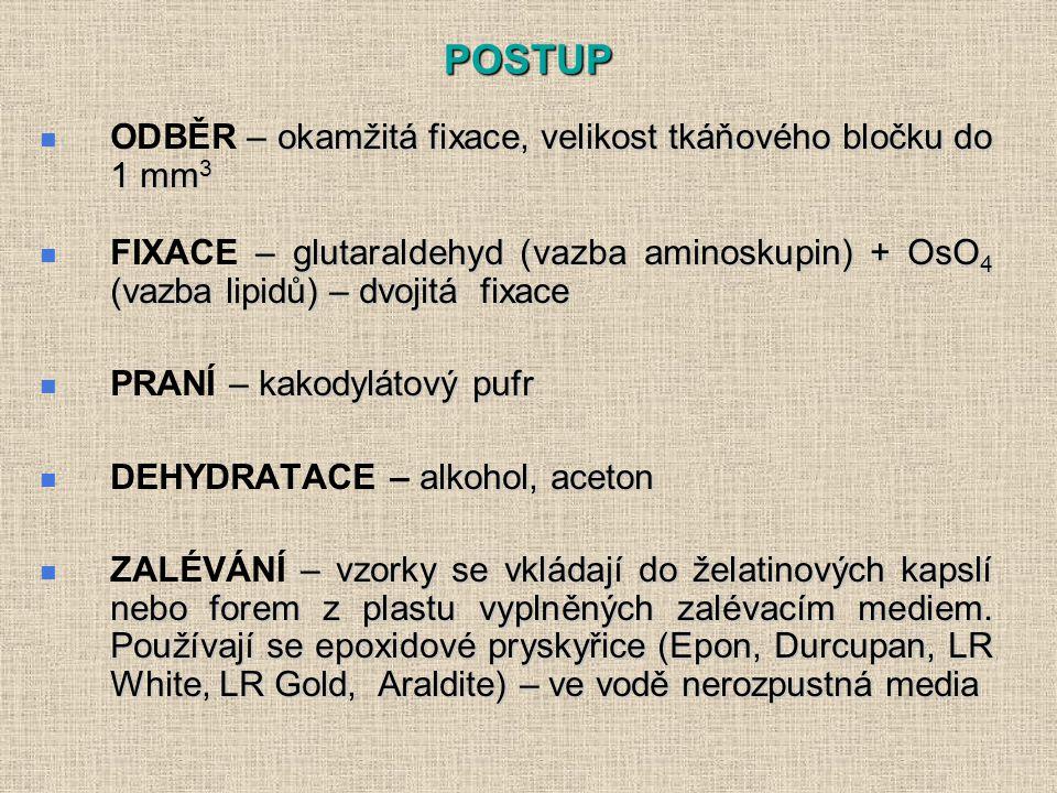 POSTUP – okamžitá fixace, velikost tkáňového bločku do 1 mm 3 ODBĚR – okamžitá fixace, velikost tkáňového bločku do 1 mm 3 – glutaraldehyd (vazba aminoskupin) + OsO 4 (vazba lipidů) – dvojitá fixace FIXACE – glutaraldehyd (vazba aminoskupin) + OsO 4 (vazba lipidů) – dvojitá fixace – kakodylátový pufr PRANÍ – kakodylátový pufr alkohol, aceton DEHYDRATACE – alkohol, aceton – vzorky se vkládají do želatinových kapslí nebo forem z plastu vyplněných zalévacím mediem.