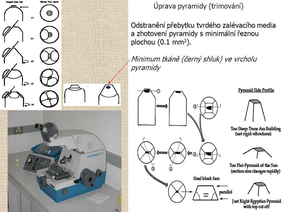 Odstranění přebytku tvrdého zalévacího media a zhotovení pyramidy s minimální řeznou plochou (0.1 mm 2 ).