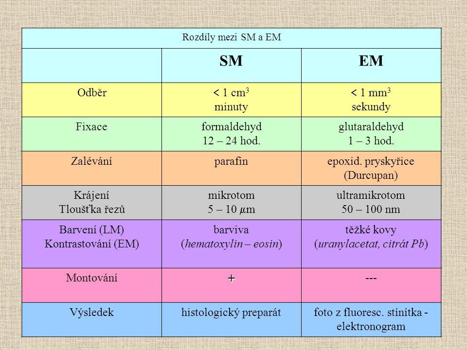 Rozdíly mezi SM a EM SMSMEM Odběr  1 cm 3 minuty  1 mm 3 sekundy Fixaceformaldehyd 12 – 24 hod.