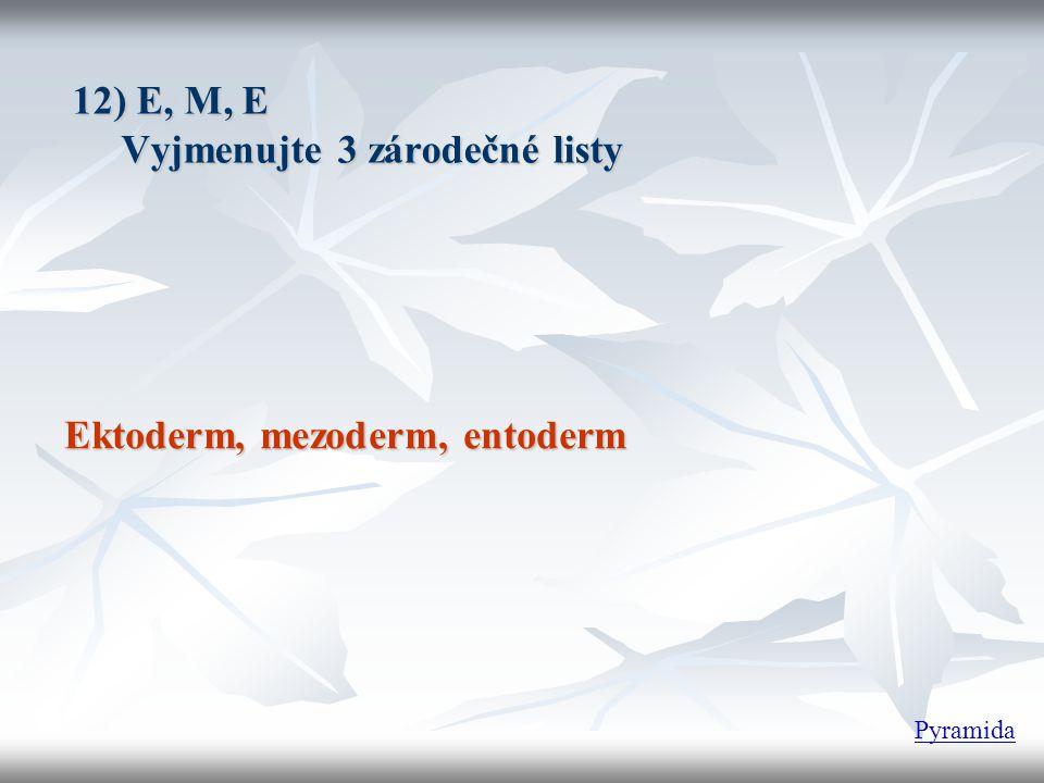 12) E, M, E Vyjmenujte 3 zárodečné listy Vyjmenujte 3 zárodečné listy Ektoderm, mezoderm, entoderm Pyramida