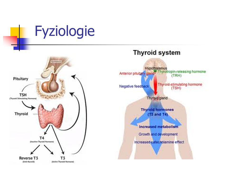 Onemocnění štítné žlázy v séniu Fyziologicky: vzestup TSH s věkem Prevalence thyreopatií roste s věkem Spektrum thyreopatií ~ mladším Senioři: - mírnější příznaky - citlivější na léčbu (začít nízkou dávkou, pomalu titrovat) - většinou maximálně konzervativní postup
