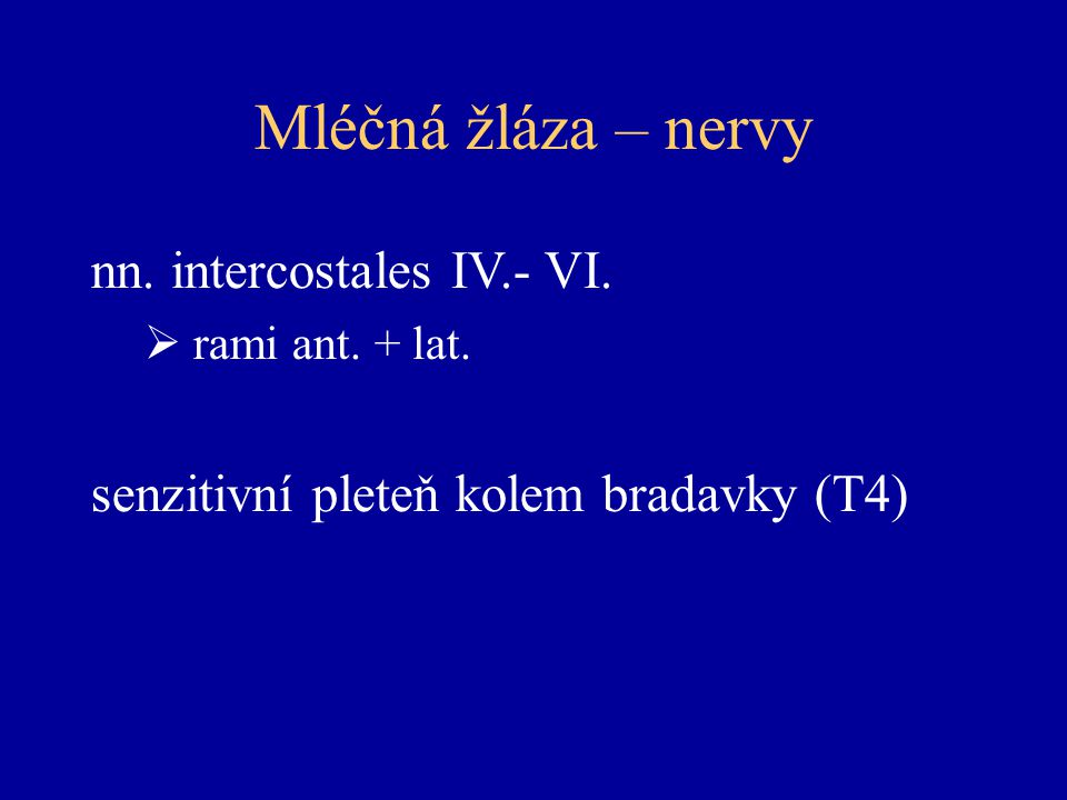 Mléčná žláza – nervy nn.intercostales IV.- VI.  rami ant.