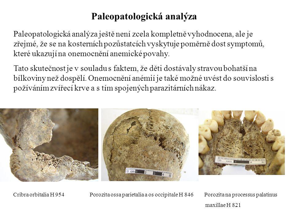 Paleopatologická analýza Paleopatologická analýza ještě není zcela kompletně vyhodnocena, ale je zřejmé, že se na kosterních pozůstatcích vyskytuje po