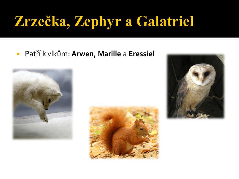  Patří k vlkům: Arwen, Marille a Eressiel