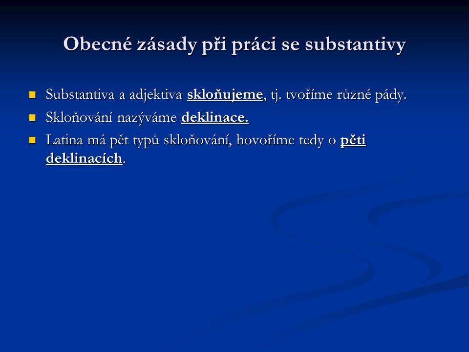Obecné zásady při práci se substantivy Slovníkový tvar U každého substantiva se musíme naučit tzv.
