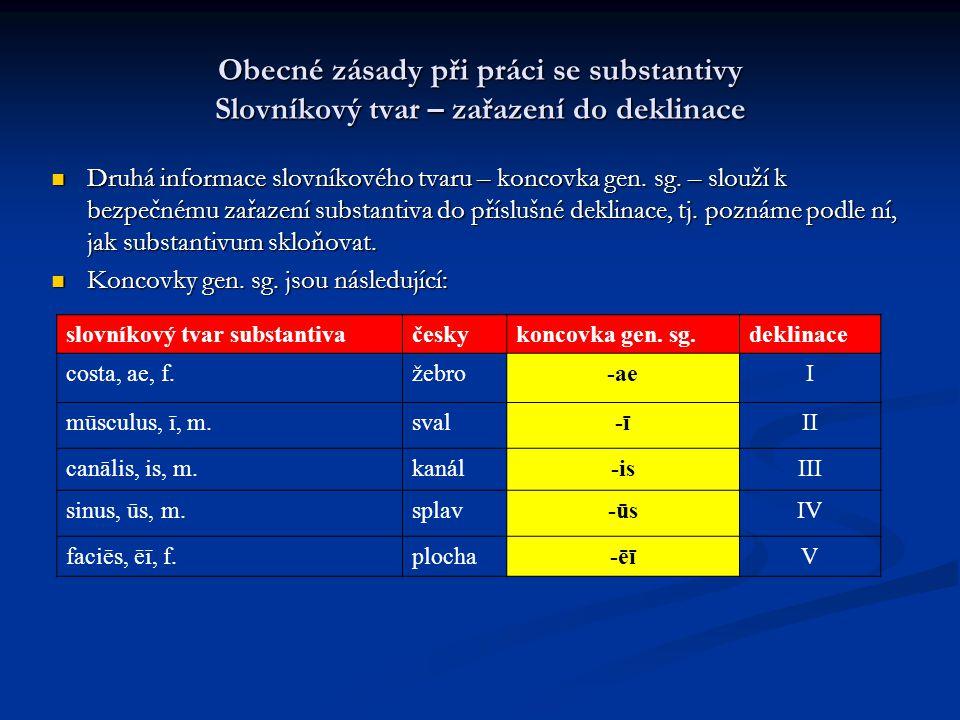 Obecné zásady při práci se substantivy Slovníkový tvar – zařazení do deklinace Druhá informace slovníkového tvaru – koncovka gen.