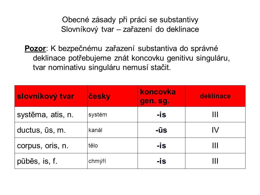 Obecné zásady při práci se substantivy Slovníkový tvar – zařazení do deklinace Pozor: K bezpečnému zařazení substantiva do správné deklinace potřebuje