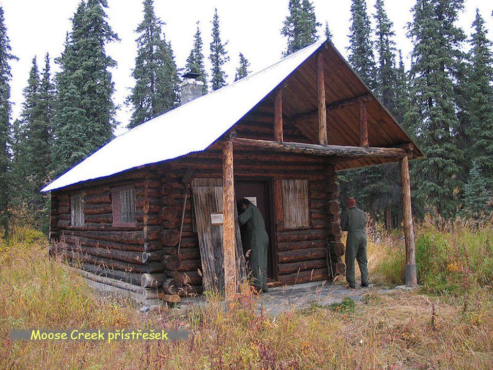 Moose Creek přístřešek a ochrana před medvědy
