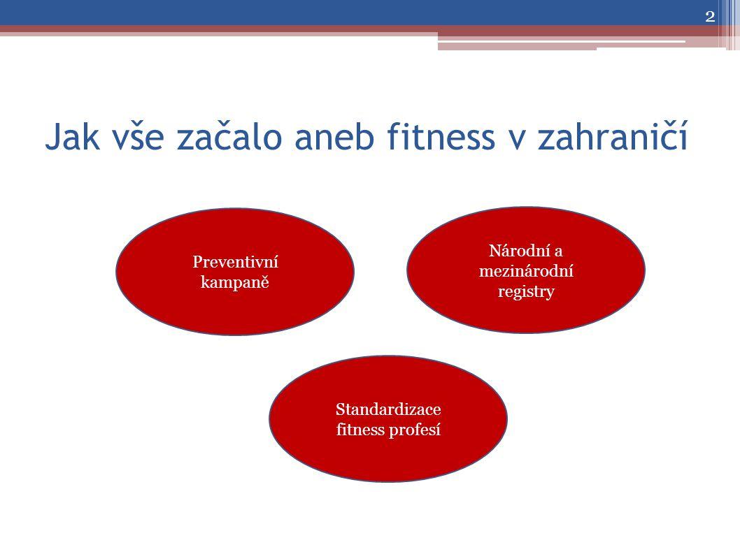 Jak vše začalo aneb fitness v zahraničí 2 Preventivní kampaně Standardizace fitness profesí Národní a mezinárodní registry