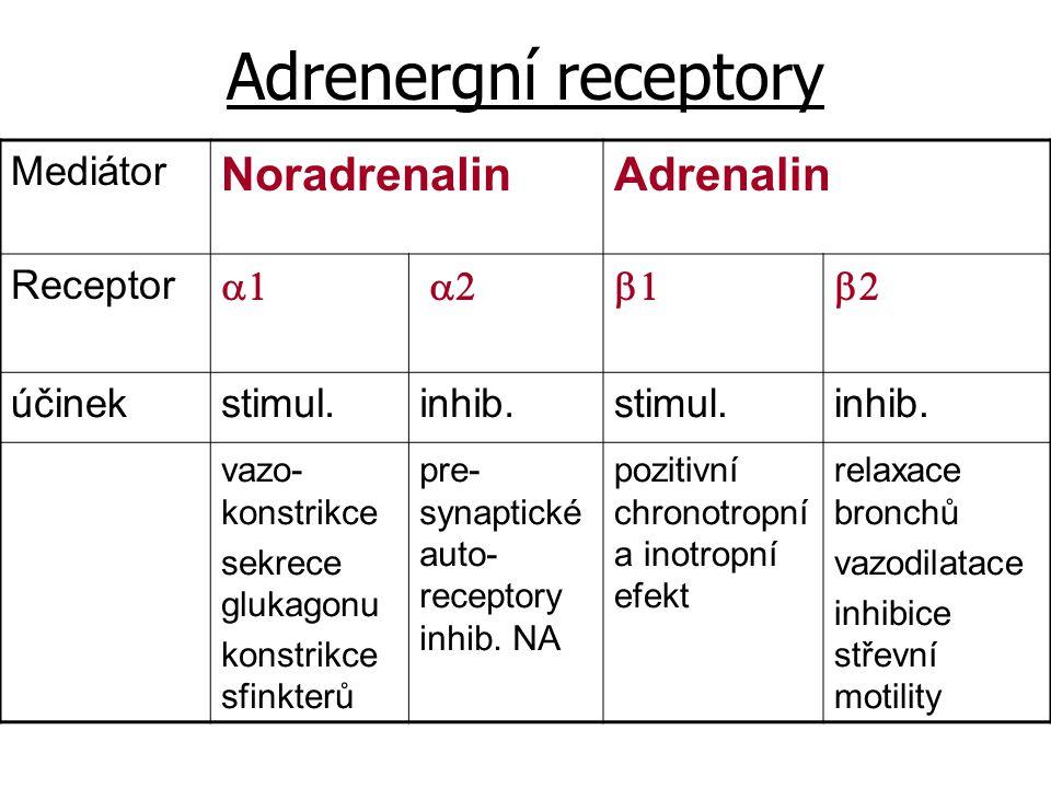 Adrenergní receptory Mediátor NoradrenalinAdrenalin Receptor  účinekstimul.inhib.stimul.inhib. vazo- konstrikce sekrece glukagonu konstrikce