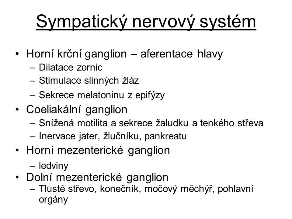 Sympatický nervový systém Horní krční ganglion – aferentace hlavy –Dilatace zornic –Stimulace slinných žláz –Sekrece melatoninu z epifýzy Coeliakální ganglion –Snížená motilita a sekrece žaludku a tenkého střeva –Inervace jater, žlučníku, pankreatu Horní mezenterické ganglion –ledviny Dolní mezenterické ganglion –Tlusté střevo, konečník, močový měchýř, pohlavní orgány