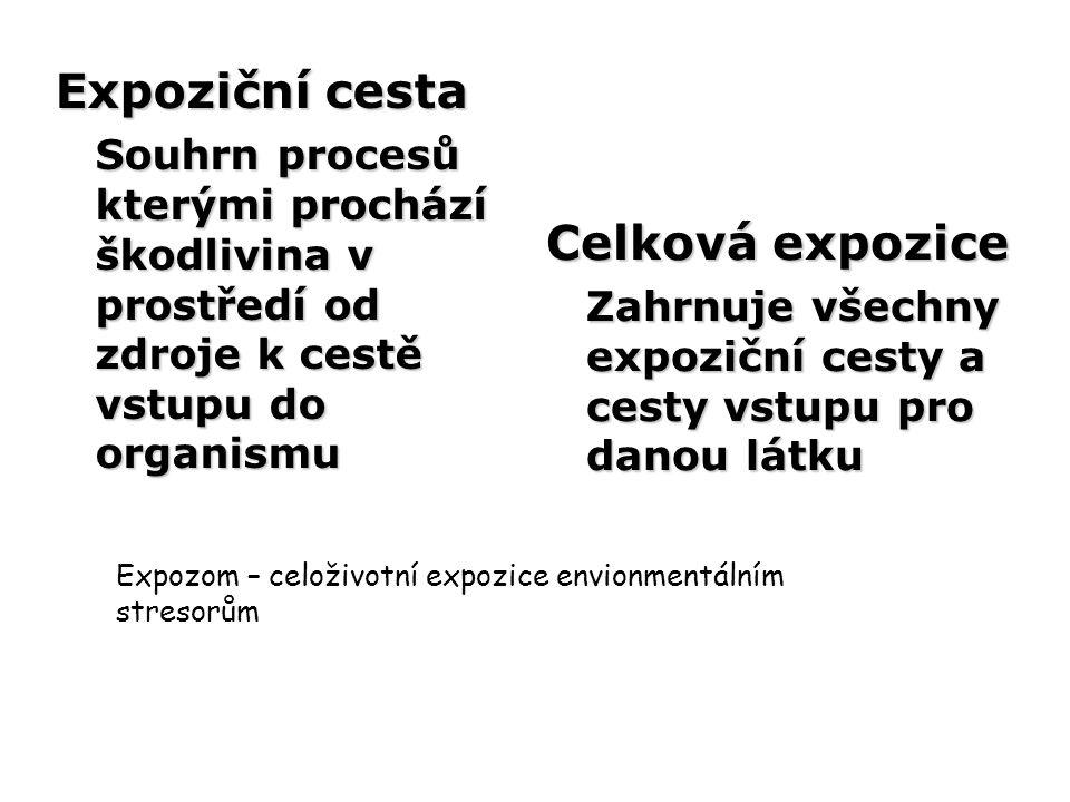 Expoziční cesta Souhrn procesů kterými prochází škodlivina v prostředí od zdroje k cestě vstupu do organismu Celková expozice Zahrnuje všechny expozič