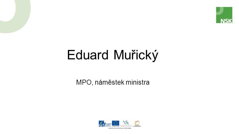 Eduard Muřický MPO, náměstek ministra