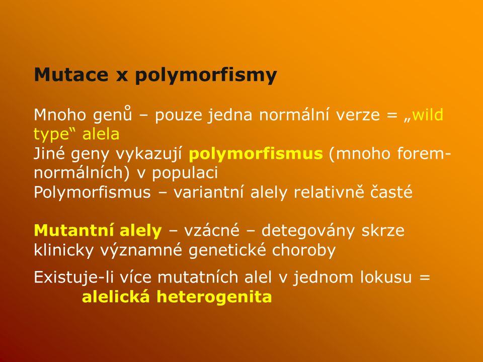 """Mutace x polymorfismy Mnoho genů – pouze jedna normální verze = """"wild type alela Jiné geny vykazují polymorfismus (mnoho forem- normálních) v populaci Polymorfismus – variantní alely relativně časté Mutantní alely – vzácné – detegovány skrze klinicky významné genetické choroby Existuje-li více mutatních alel v jednom lokusu = alelická heterogenita"""