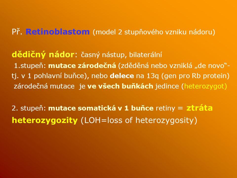 """Př. Retinoblastom (model 2 stupňového vzniku nádoru) dědičný nádor: časný nástup, bilaterální 1.stupeň: mutace zárodečná (zděděná nebo vzniklá """"de nov"""