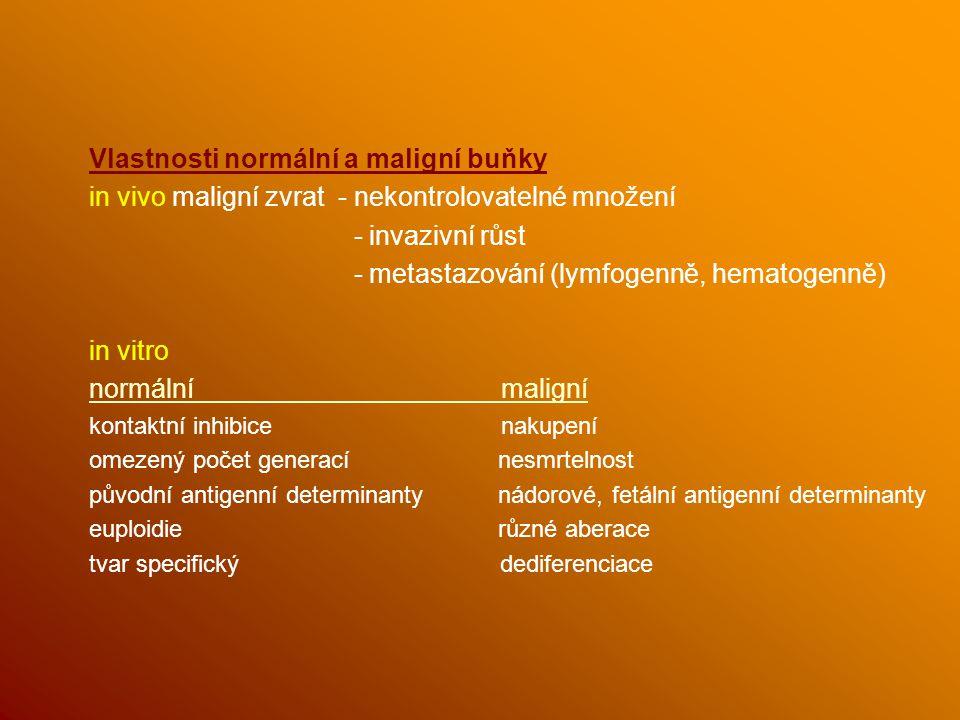 Vlastnosti normální a maligní buňky in vivo maligní zvrat - nekontrolovatelné množení - invazivní růst - metastazování (lymfogenně, hematogenně) in vitro normální maligní kontaktní inhibice nakupení omezený počet generací nesmrtelnost původní antigenní determinanty nádorové, fetální antigenní determinanty euploidie různé aberace tvar specifický dediferenciace