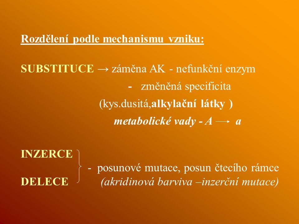 Rozdělení podle mechanismu vzniku: SUBSTITUCE → záměna AK - nefunkční enzym - změněná specificita (kys.dusitá,alkylační látky ) metabolické vady - A a