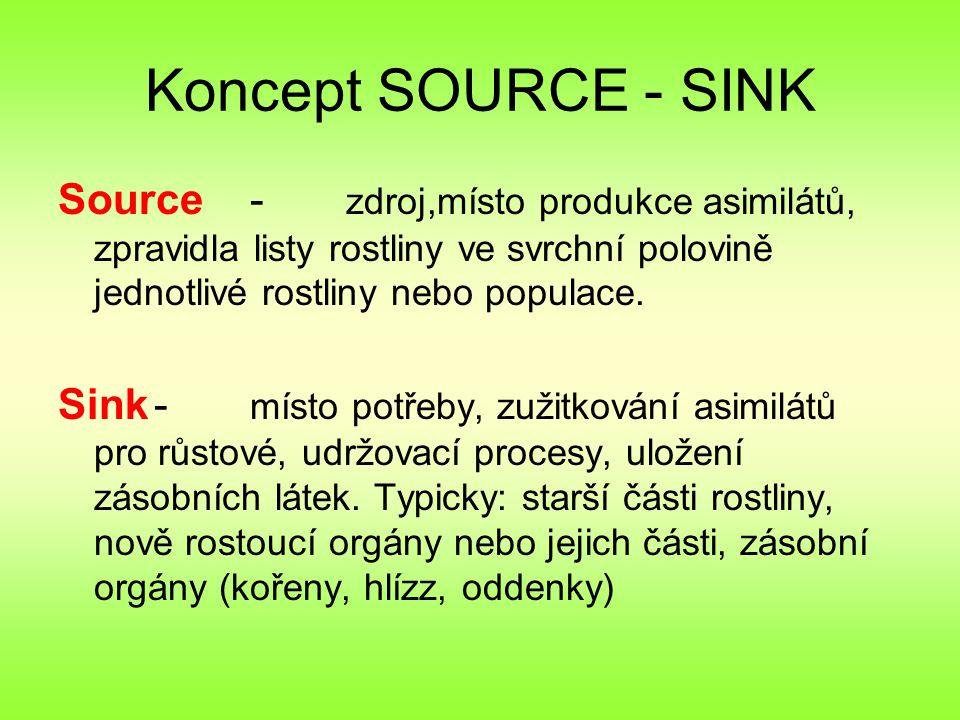 Koncept SOURCE - SINK Source- zdroj,místo produkce asimilátů, zpravidla listy rostliny ve svrchní polovině jednotlivé rostliny nebo populace.