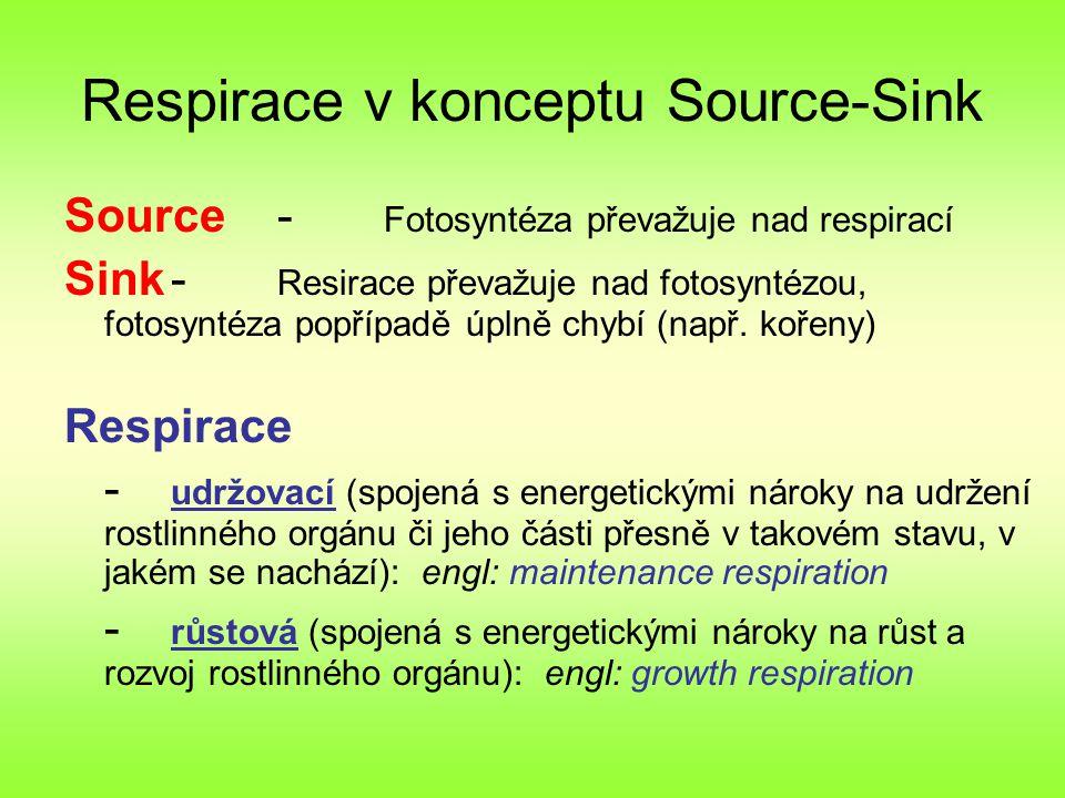 Respirace v konceptu Source-Sink Source- Fotosyntéza převažuje nad respirací Sink- Resirace převažuje nad fotosyntézou, fotosyntéza popřípadě úplně chybí (např.