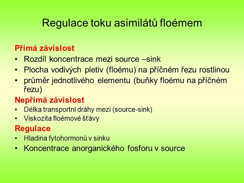 Regulace toku asimilátů floémem Přímá závislost Rozdíl koncentrace mezi source –sink Plocha vodivých pletiv (floému) na příčném řezu rostlinou průměr jednotlivého elementu (buňky floému na příčném řezu) Nepřímá závislost Délka transportní dráhy mezi (source-sink) Viskozita floémové šťávy Regulace Hladina fytohormonů v sinku Koncentrace anorganického fosforu v source