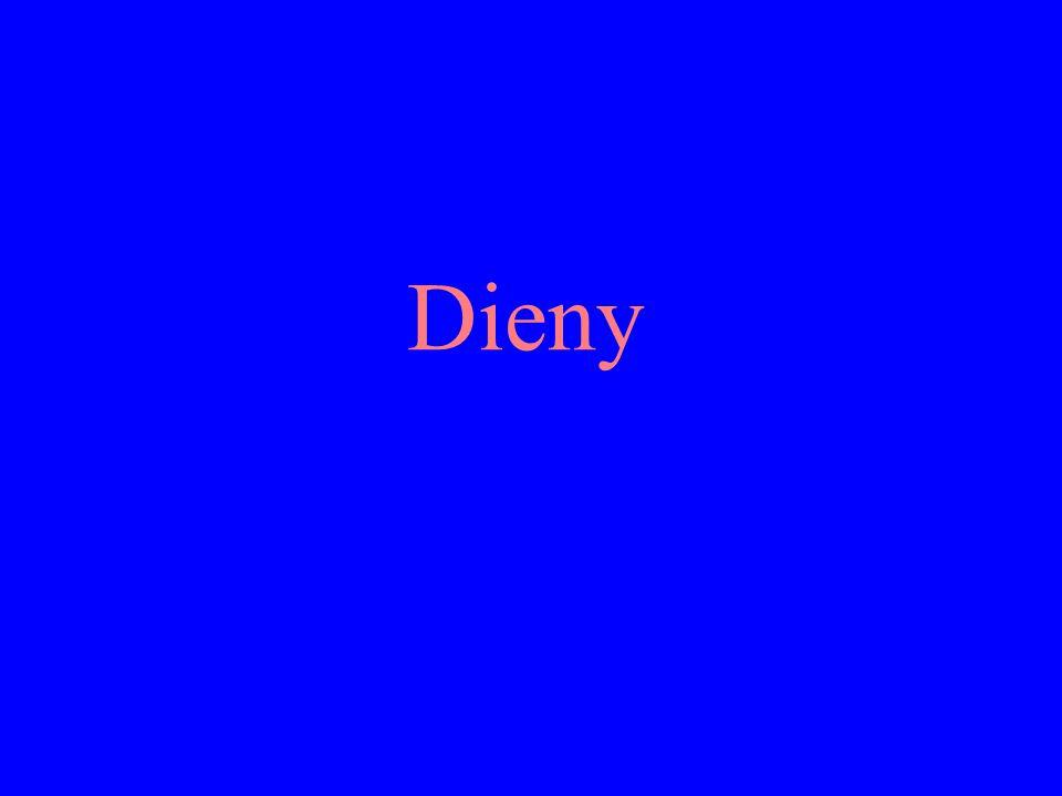Dieny