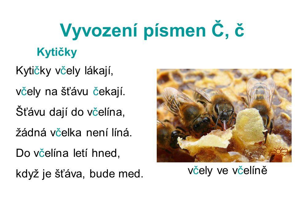 Vyvození písmen Č, č Kytičky včely lákají, včely na šťávu čekají.
