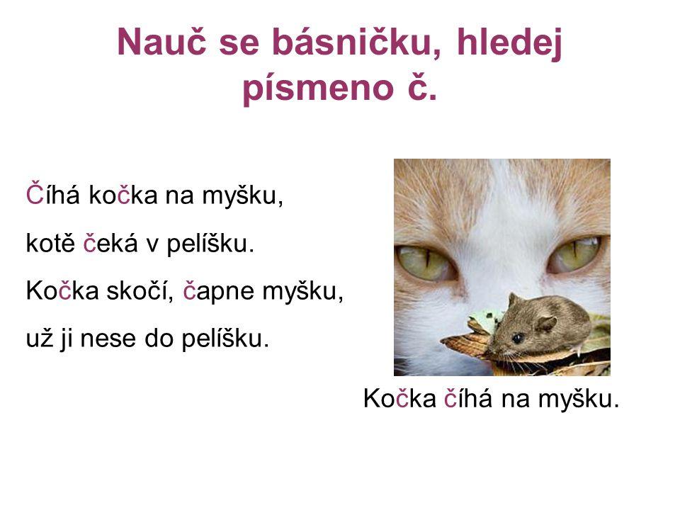 Nauč se básničku, hledej písmeno č.Číhá kočka na myšku, kotě čeká v pelíšku.