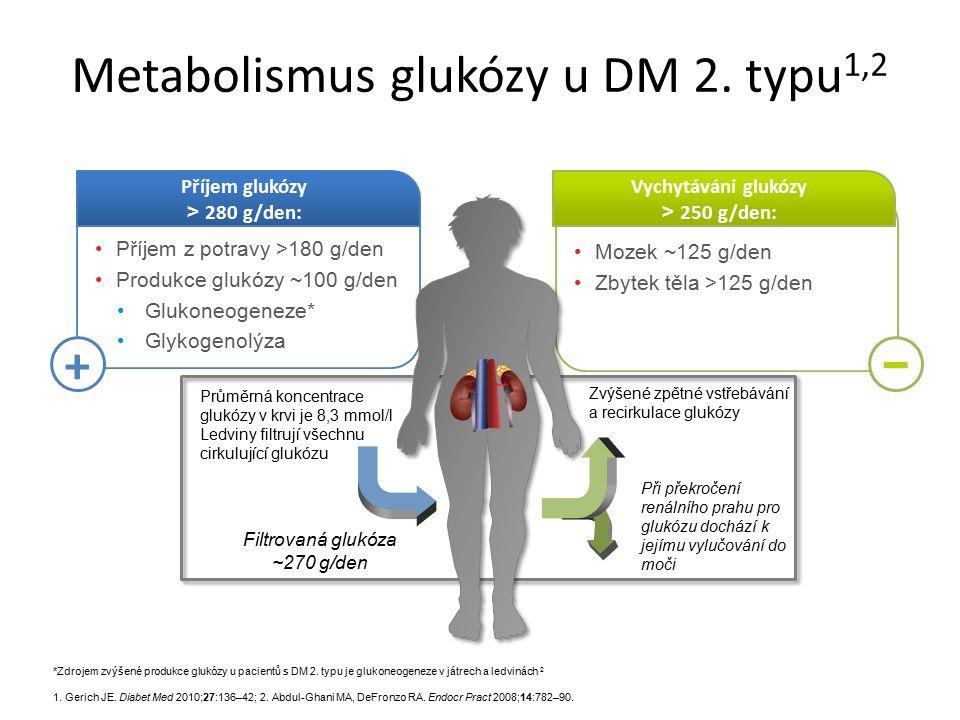 Mozek ~125 g/den Zbytek těla >125 g/den Vychytávání glukózy > 250 g/den: Příjem z potravy >180 g/den Produkce glukózy ~100 g/den Glukoneogeneze* Glyko