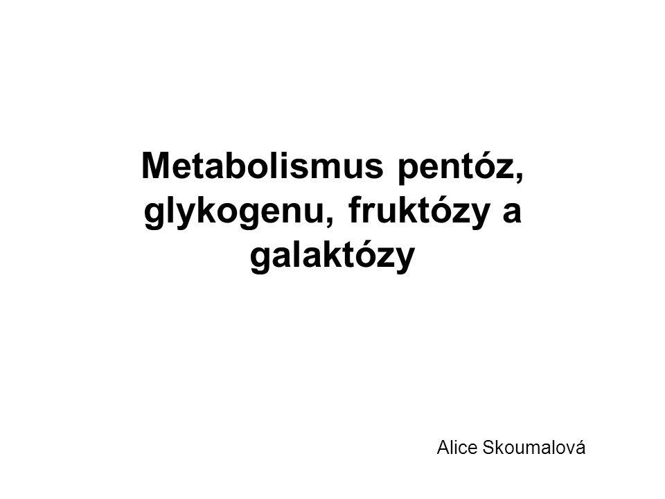 Metabolismus pentóz, glykogenu, fruktózy a galaktózy Alice Skoumalová