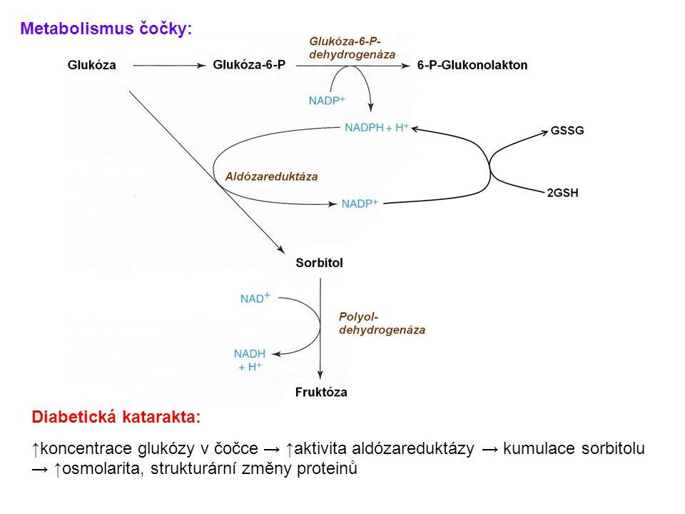 Metabolismus čočky: Diabetická katarakta: ↑koncentrace glukózy v čočce → ↑aktivita aldózareduktázy → kumulace sorbitolu → ↑osmolarita, strukturární zm
